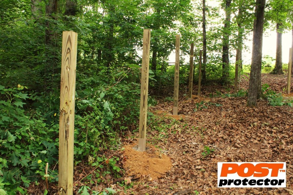 4x4 fence post decay protection